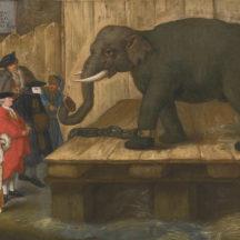 Longhi Pietro, L'Elephant, 1774, huile sur toile, 48 x 61 cm, collection particulière